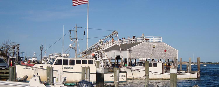 memorial wharf edgartown