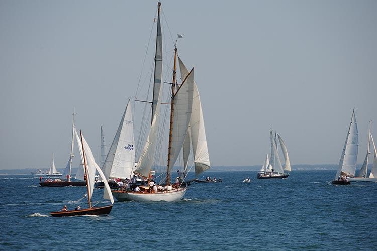 sail boats regatta