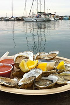oysters plate with ocean view in Menemsha Martha's Vineyard