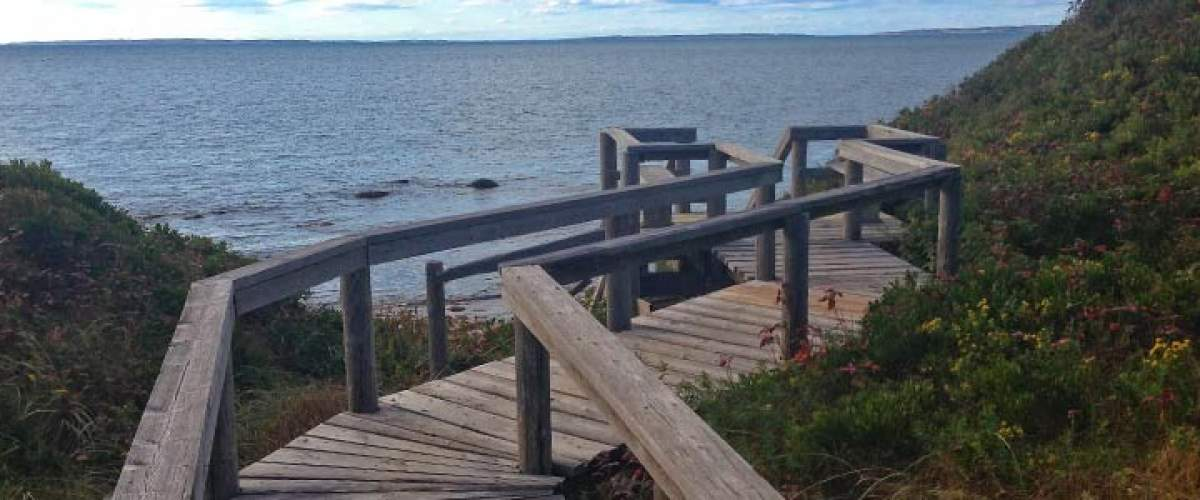 Get Outside - Top Trails to Explore on Martha's Vineyard